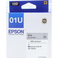 C13T01U683 - Grey Ink